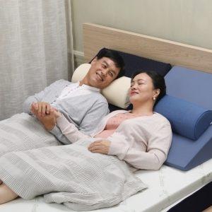 Winterthur Wedge Pillow Singapore SingaporeHomeFurniture